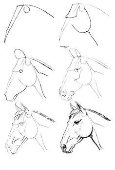 Как рисовать лошадь? | Рисуем лошадь на дыбах, в движении карандашом поэтапно