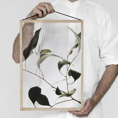 The Floating Leaves series is the result of a collaboration between 3 Copenhagen-based design companies, Paper Collective, Moebe and Norm Architects, comes a brand new series of transparent art prints created for the iconic Moebe frames. Leaf Prints, Art Prints, Impressions Botaniques, Leaf Projects, Copenhagen Design, Journal Du Design, Nature Artwork, Nature Posters, Photoshop