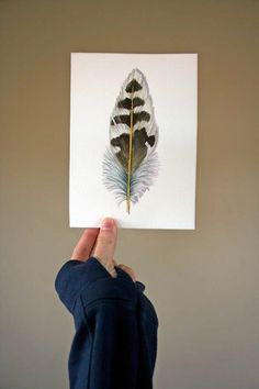 Woodpecker Feather - Original Watercolor study of a Northern Flicker Feather