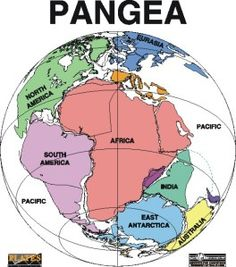Map of Pangea (300,000,000 yrs ago to 200,000,000 yrs ago).