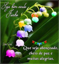 Flores e frases: BEM VINDO JUNHO...