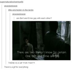 My Secret Life as a Fangirl. | The Supernatural Fandom taking over tumblr one post and gif at a time