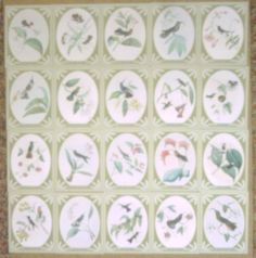 Hummingbirds Limited Edition set of 20 Trading Cards. Only 300 available worldwide. Don't miss your chance to own them