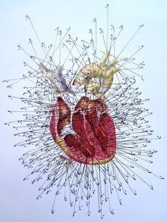 Measured Heart in Inches | Flickr - Photo Sharing!