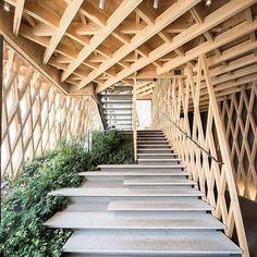 Sunny Hills by Kengo Kuma & Associates Architects (2013), Minato #Tokyo #Japan ... Area: 293 sqm.  Daici Ano