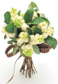 Sweet Snowberries