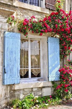 1000 Images About Welcoming Windows On Pinterest