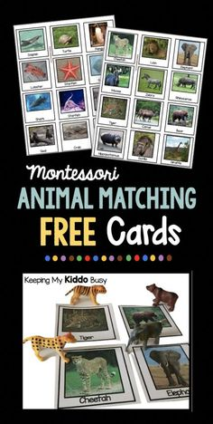 Montessori Animal Matching cards - FREE Nomenclature printables - children match animals to picture/word cards.