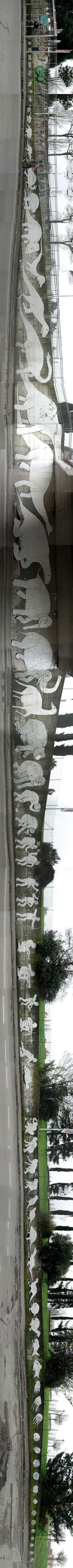 Evolution Graffiti