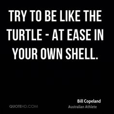 try to be like a turtle at ease in your own shell.