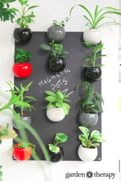 Magnetic Plant Pots and lots more indoor vertical wall garden ideas!