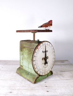 vintage green scale