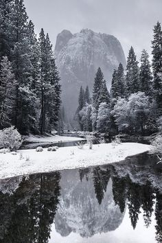 Yosemite National Park, California, United States by Mike Mezeul