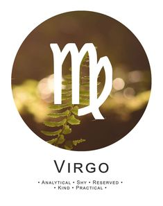 Virgo ~ analytical, kind, practical