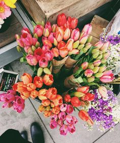 Tulips, roses, fresh flowers, bouquet of flowers May Flowers, Flowers Garden, Fresh Flowers, Planting Flowers, Beautiful Flowers, Spring Flowers, Tulips Flowers, Spring Blooms, Beautiful Images
