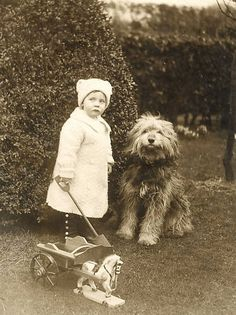 bearded collie and child.