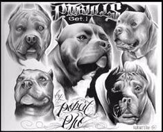 tattoos of pitbulls photo Pitbull Drawing, Bulldog Drawing, Black Pitbull Puppies, Tupac Art, Pit Dog, Bulldog Mascot, Graffiti, Chicano Art, Animal Wallpaper