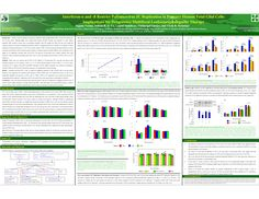 Research Poster Templates | Powerpoint template for scientific poster - PDF