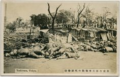 "Not ""Unit 731"" or the ""Nanking Massacre"" but a postcard showing some of the victims of The Great Kanto Earthquake of 1923,  it is always a great feeling when you unearth another fake photo!...it helps prove that the ""Japanese Nanking Massacre"" never happened, and makes China a laughing stock!"