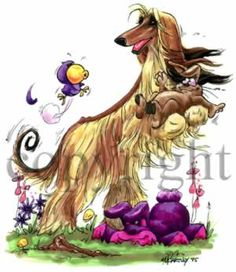 McCartney Dogs -- http://www.mccartneysdogs.com/breeds.asp?DisplayType=Theme&cmsID=166