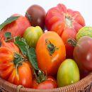 El tomate y su poder anticancerígeno, purificador, alcalinizante ¡y mucho más! ecoagricultor.com