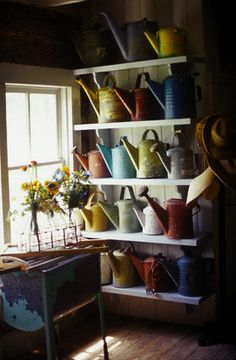lots of watering cans
