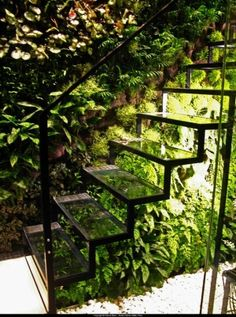 I love how these glass steps are used to house the plants. How lovely.