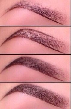 Perfectly filled brows