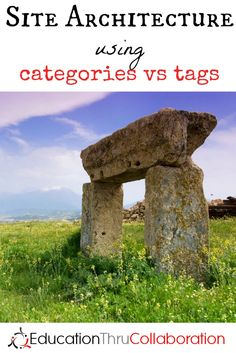 Are you using your categories and tags properly for optimum reader enjoyment and SEO? Find out!!!
