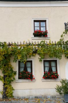 Adorned Windows in Wachau Valley Austria | photography by http://emilia-jane.com/