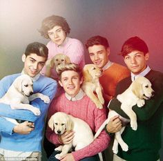 1D and Puppies