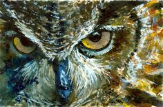EyesOfOwls_16 ..-.. Watercolors_jdb