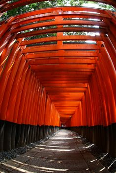 Torii ( traditional Japanese gate ) Fushimi Inari-taisha, Kyoto, Japan