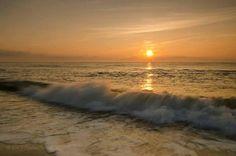 Ahh I Love The Beach, Sea Shells, Around The Worlds, Ocean, Sky, Celestial, Sunset, Outdoor, Outdoors