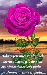 Good Morning Funny, Good Morning Friends, Morning Humor, Rose, Plants, Pictures, Free Downloads, Beautiful Images, Beautiful Pictures