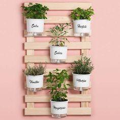 Horta vertical com vaso autoirrigável Plant Decor, Planter Pots, Indoor, Wood, Instagram, Potted Herb Gardens, Wall Vases, Wine Bottle Planter, Vegetable Gardening