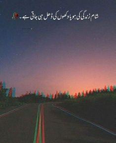 Urdu Funny Poetry, Poetry Quotes In Urdu, Best Urdu Poetry Images, Urdu Poetry Romantic, Love Poetry Urdu, Romantic Love Quotes, Poetry Feelings, Feelings And Emotions, Best Quotes In Urdu