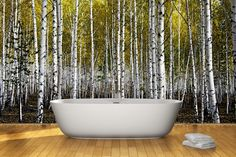 Pix For > Painted Forest Wall Mural