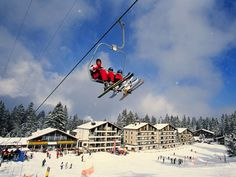 Switzerland, Fair Grounds, Fun, Travel, Viajes, Destinations, Traveling, Trips, Hilarious