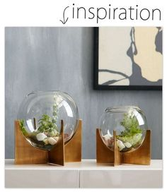 Make This: Cross Base Terrariums - Reality Daydream