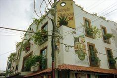 onesaralorraine:  Butterfly Hotel, Mexicosaralorraine