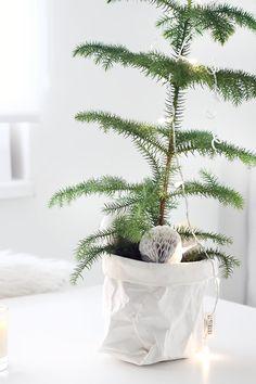 Merry Christmas | Xmas | Ideas | Decorating | Decor | Gift | Party | DIY | Holiday Season | Xmas tree | Snow