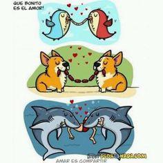 Amor #humor #chistes