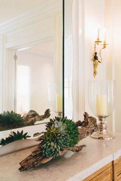 Inspiration: succulents