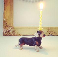 Dackelparadies - Dackel mit Kerze