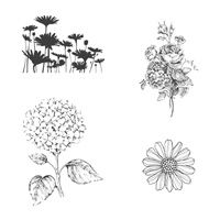 Best of Flowers, Stampin Up!  www.stampinbythesea.com  Kimberly Van Diepen, Stampin Up!