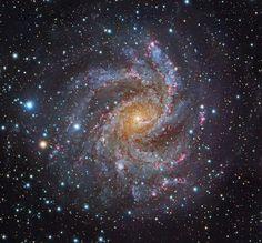 Galaxy Photos, Galaxy Pictures, Cosmos, Constellation Piercings, Anime Galaxy, Spiral Galaxy, Galaxy Painting, Yellow, Galaxies