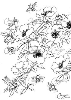 Masjas Honeybees Coloring Page made by Masja van den Berg - featuring 1 hand-drawn design for you to bring to life with color! Bee Coloring Pages, Colouring Pics, Coloring Sheets, Coloring Books, Anemone Flower, Flower Art, Secret Garden Colouring, Bordados E Cia, Drawing Clipart