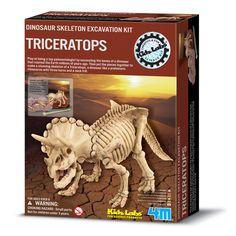 공룡 발굴놀이. 재미있을 듯!