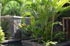 Mauritius, St. Regis Villa Mauritius, Villa, Star Wars, Aquarium, Plants, Luxury, Vacations, Goldfish Bowl, Aquarius